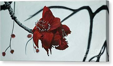Red Silk Cotton Flower Canvas Print by Jennifer Watson