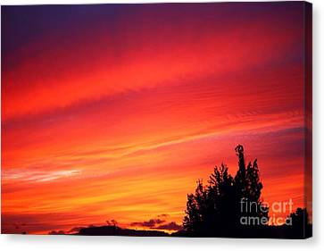 Canvas Print featuring the photograph Red Skies At Night  by Nick Gustafson