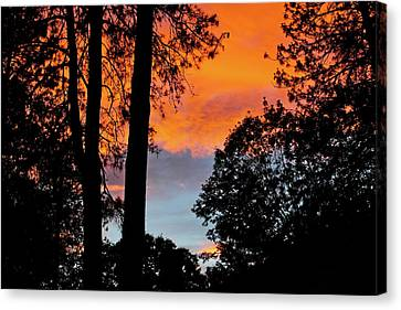Canvas Print featuring the photograph Red Sky At Night by Michele Myers