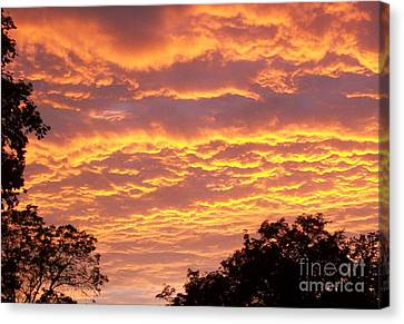 Sky Scape Canvas Print - Red Sky Delight by Marsha Heiken