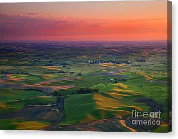 Red Sky Palouse Canvas Print by Mike Dawson
