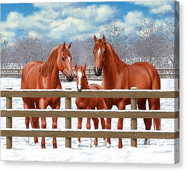 Red Sorrel Quarter Horses In Snow Canvas Print by Crista Forest