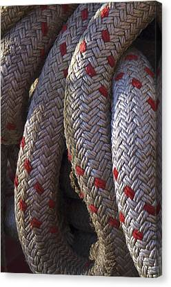 Red Speckled Rope Canvas Print by Henri Irizarri