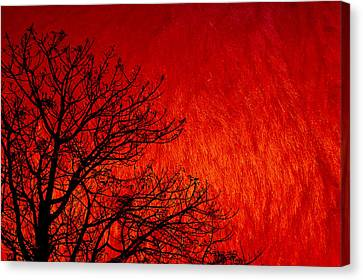 Red Storm Canvas Print by Charuhas Images