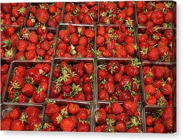Canvas Print featuring the photograph Union Square Market Red Strawberries by Diane Lent