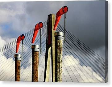 Red Subject Canvas Print