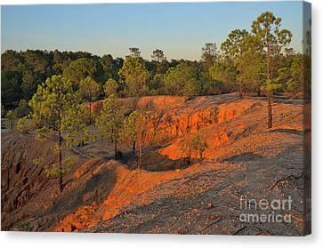 Red Sunset Cliffs Canvas Print