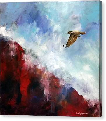 Red Tail Canvas Print by David  Maynard