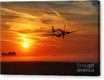 Red Tail Sunrise Canvas Print by J Biggadike