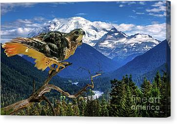 Red Tailed Hawk, Chinook Pass, Mt. Ranier Canvas Print