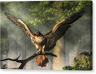 Red Tailed Hawk Canvas Print by Daniel Eskridge