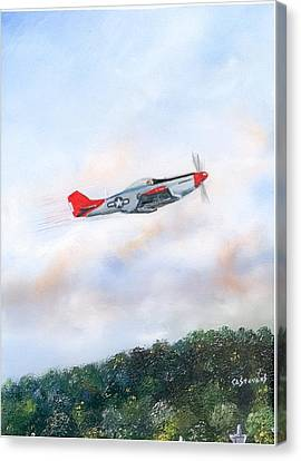 Red Tails Canvas Print