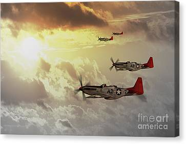 Red Tails Canvas Print by J Biggadike