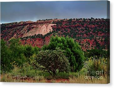 Canvas Print featuring the photograph Red Terrain - New Mexico by Diana Mary Sharpton