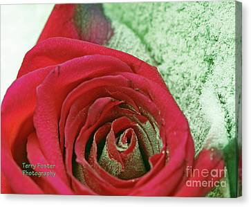 Red Canvas Print by Terry Foster