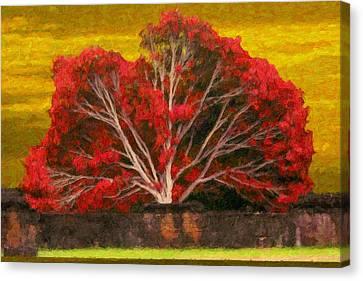Red Thai Tree Canvas Print