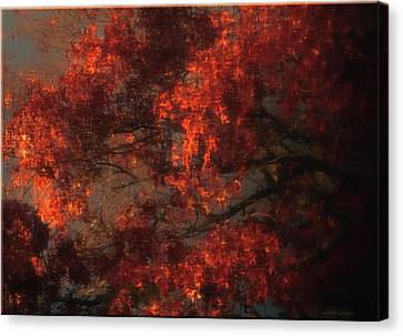 Red Tree Scene Canvas Print by Mikki Cucuzzo