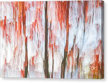 Red Trees On Lake Shore Canvas Print by Elena Elisseeva