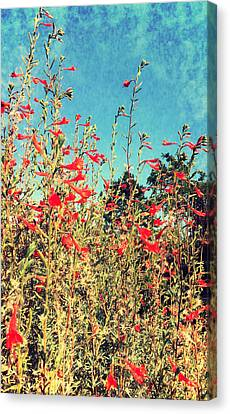 Red Trumpets Playing Canvas Print