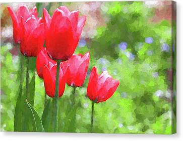 Canvas Print featuring the photograph Red Tulips In The Spring Garden by Jennie Marie Schell