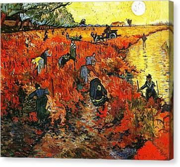 Red Vineyard Canvas Print by Sumit Mehndiratta