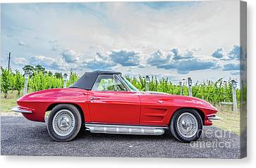 Red Vintage Corvette Sting Ray Vineyard Canvas Print by Edward Fielding