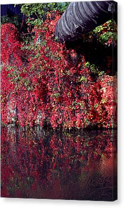 Red Waste Canvas Print by Jez C Self