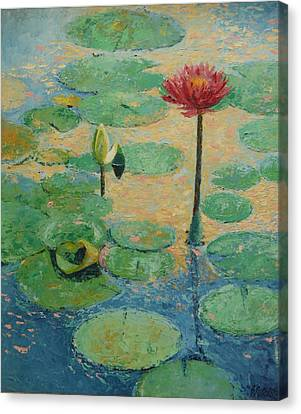 Waterlillys Canvas Print - Red Waterlilly by William Rogers