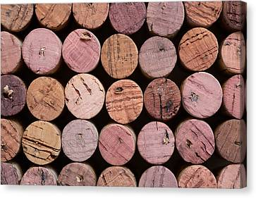 Shades Of Red Canvas Print - Red Wine Corks 135 by Frank Tschakert