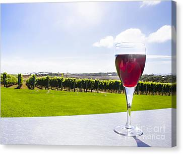 Red Wine Glass At Tasmania Countryside Winery Canvas Print