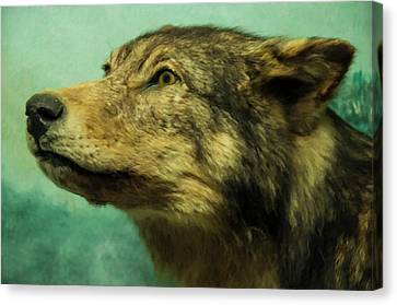 Canvas Print featuring the digital art Red Wolf Digital Art by Chris Flees