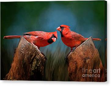 Redbird Sentinels Canvas Print by Bonnie Barry