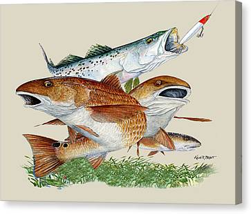 Reds And Trout Canvas Print