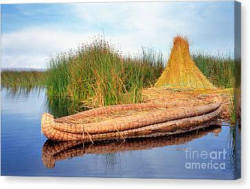 Canvas Print featuring the photograph Reed Reflection by Nigel Fletcher-Jones