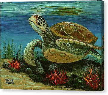Canvas Print featuring the painting Reef Honu by Darice Machel McGuire