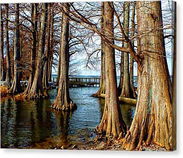 Reelfoot In Winter II Canvas Print by Julie Dant