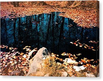 Reflect Pond Canvas Print by Andrew Kazmierski