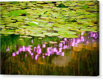 Reflected Flowers And Lilies Canvas Print by Paul Kloschinsky