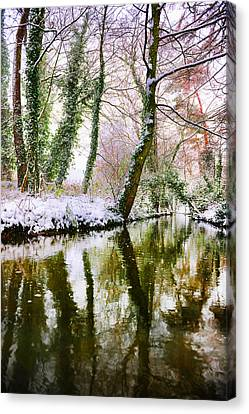 Canvas Print featuring the photograph Reflected Winter by Gouzel -