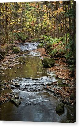 Canvas Print featuring the photograph Reflecting Autumn by Dale Kincaid