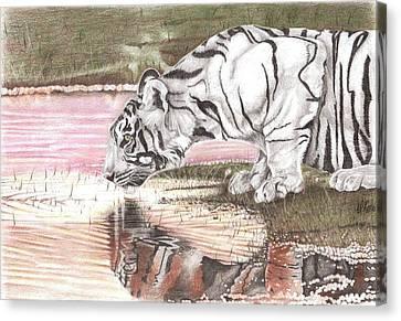 Reflecting Canvas Print by Dustin Knighton