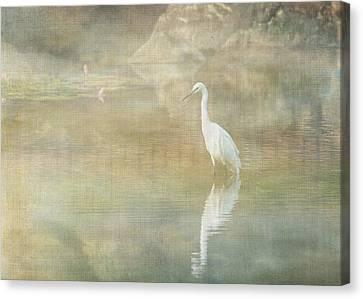 Reflecting Egret Canvas Print by Sarah Vernon