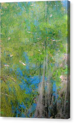 Reflecting On Abundant Humidity Canvas Print by Sean Holmquist