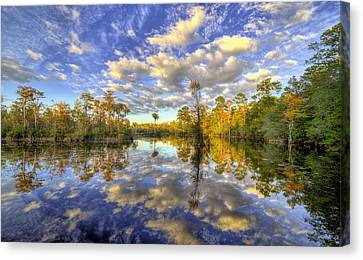 Canvas Print featuring the photograph Reflecting On Florida Wetlands by JC Findley