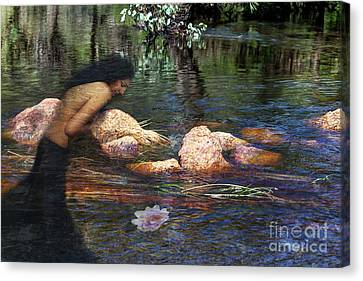 Reflecting On The Lotus Canvas Print by Elaine Teague