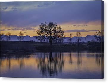 Reflecting Tree Canvas Print by Trish Kusal