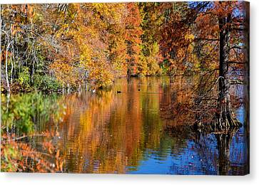 Reflected Fall Foliage Canvas Print by Allan Levin