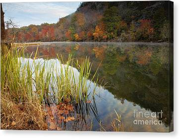Reflection In The Fort River Canvas Print by Iris Greenwell