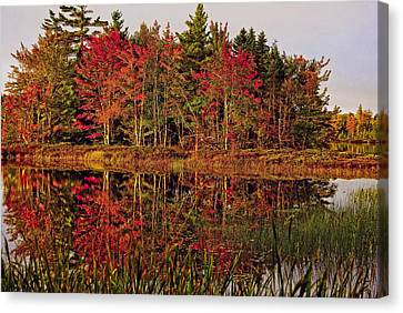 Canvas Print featuring the photograph Reflection Island by Kathleen Sartoris