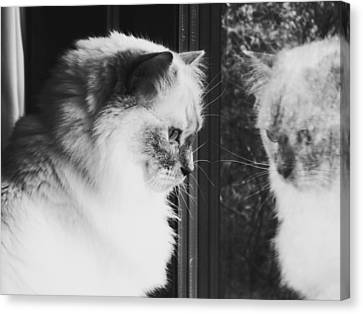 Reflection Canvas Print by Karen Stahlros